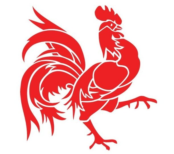 Old red rooster